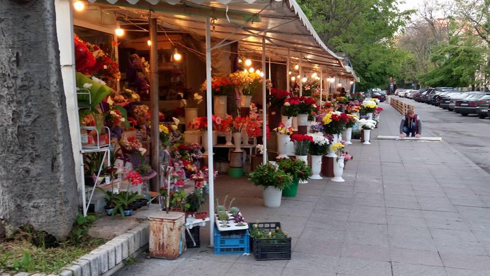 Varna - Květinový trh