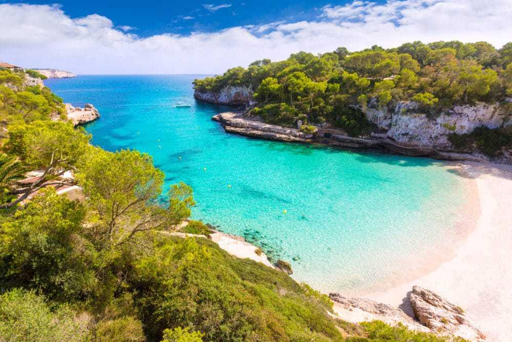 Mallorca - Vlk na Cestách