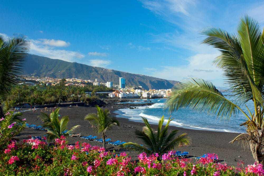 Tenerife s dětmi - Vlk na cestách