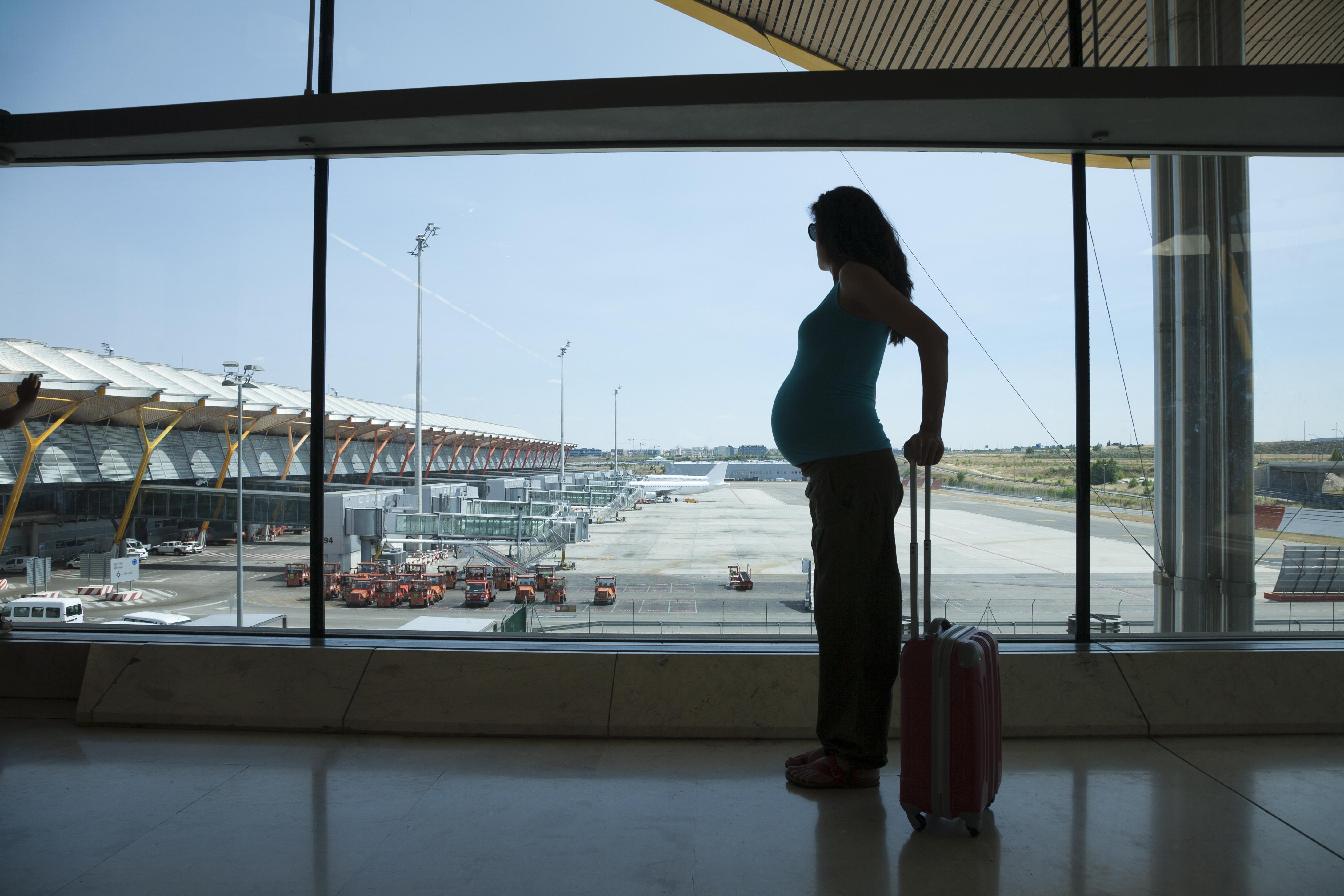 Těhotná letadlem - Vlk na cestách