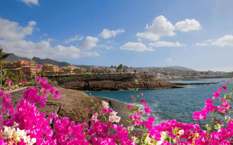 s dětmi na Tenerife